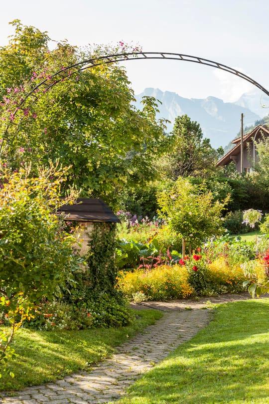 Blick in den Garten von Laueners in Frutigen: Bogen mit einer Waldrebe