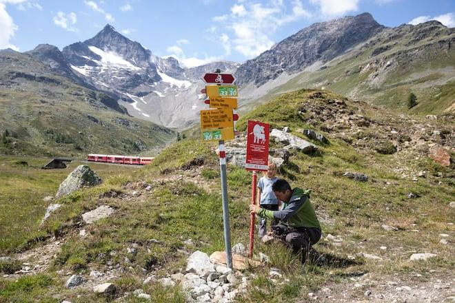 Otmaro Beti und Tochter stellen eine Tafel auf, die auf Mutterkühe hinweist. Im Hintergrund die Berninabahn